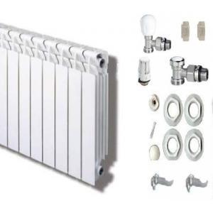 Radiador Rayco RD aluminio 600  12 Elementos con kit montaje termostatico