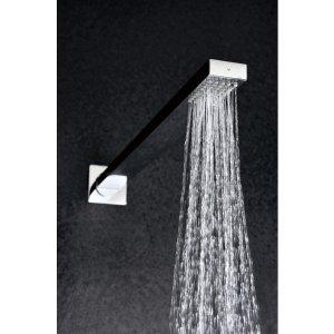 Rociador ducha con brazo